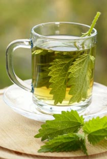Image result for images of Nettle leaf tea