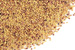 Red clover seed, whole Organic