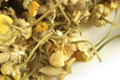 Chamomile, whole Organic