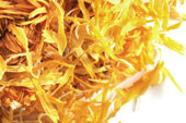 Marigold (calendula), whole