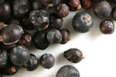 Juniper berry (blue), whole