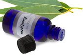 Eucalyptus, essential oil