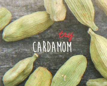 [ cardamom ] ~ from Monterey Bay Spice Co