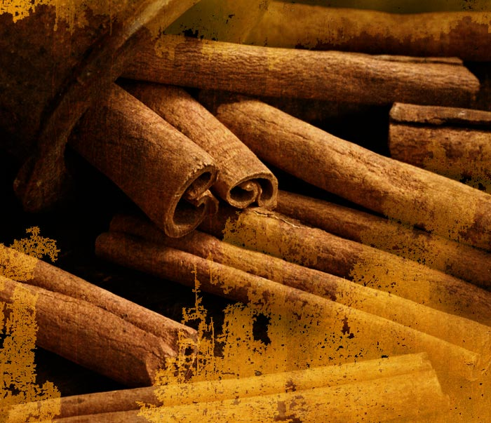 [ Cinnamon Sins: History, Legend, and Modern Uses ] ~ from Monterey Bay Spice Co