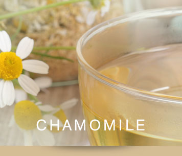 [ chamomile ] ~ from Monterey Bay Spice Co