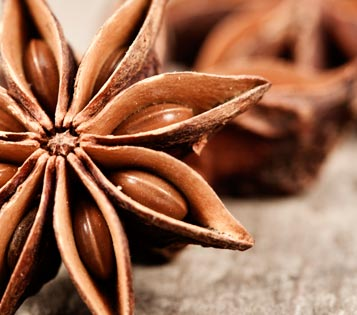 [ star anise ] ~ from Monterey Bay Spice Co