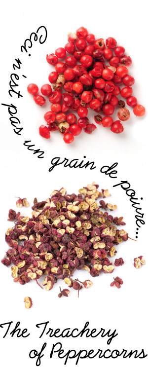 [ A Passion for Pepper: Ceci n'est pas un grain de poivre... ] ~ from Monterey Bay Spice Company