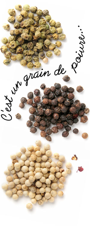[ A Passion for Pepper: C'est un grain de poivre... ] ~ from Monterey Bay Spice Company
