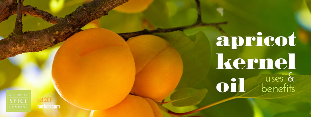 [ Apricot Kernel Oil ] ~ from Monterey Bay Spice Company