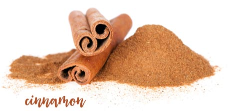 [ breakfast tips: cinnamon ] ~ from Monterey Bay Spice Company