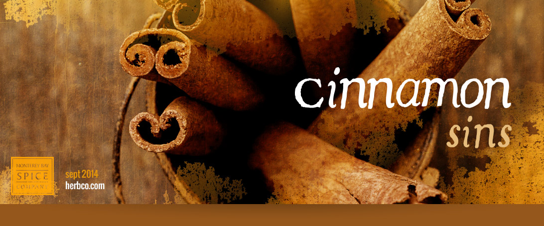 [ Cinnamon Sins ] ~ from Monterey Bay Spice Co