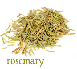[ info: rosemary ] ~ from Monterey Bay Spice Company