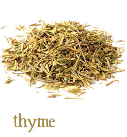 [ info: thyme ] ~ from Monterey Bay Spice Company
