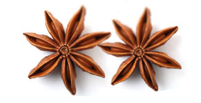 [ star anise ] ~ from Monterey Bay Spice Company