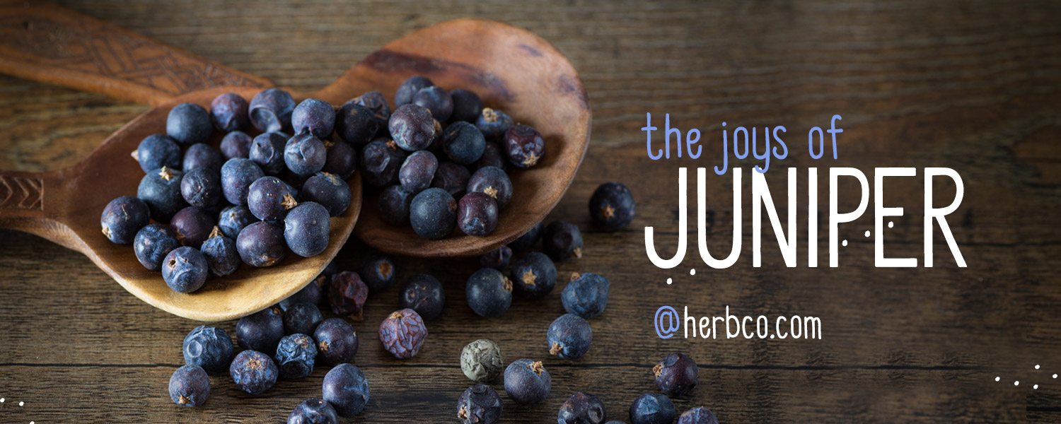 [ THE JOYS of JUNIPER ] ~ from HerbCo