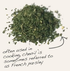 [ tip: Partner tarragon with chervil when seasoning soups, stews and sauces.   ~ from Monterey Bay Spice Company ]