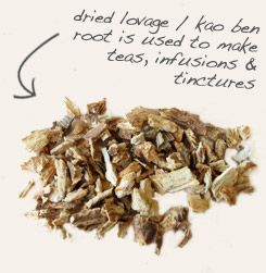 [ tip: Use caraway and lovage together in teas and digestifs. ]