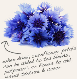 [ tip: Blend with cornflower for a colorful tea blend.   ~ from Monterey Bay Spice Company ]