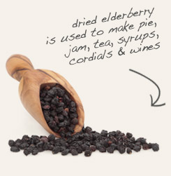 [ tip: Pair elder flower with berries from the same plant in wines, cordials and syrups. ~ from Monterey Bay Spice Company ]
