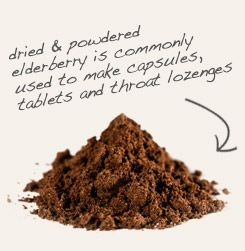 [ tip: Encapsulate coptis root and powdered elderberry together to enhance astringency. ~ from Monterey Bay Spice Company ]