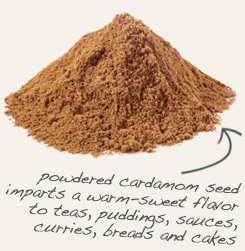 [ tip: Pair powdered guarana seed with powdered cardamom seed in hot beverages and in baked goods.  ~ from Monterey Bay Spice Company ]