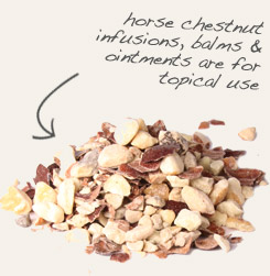 [ tip: Decoct white oak bark with horse chestnut for use in topical formulations. ~ from Monterey Bay Spice Company ]