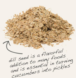 [ tip: Use brown mustard seed with dill seed in pickling spice blends. ~ from Monterey Bay Spice Company ]