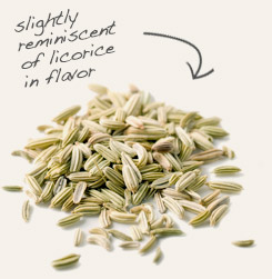 [ tip: Partner with fennel seed to season Indian stews and vegetable dishes.  ~ from Monterey Bay Spice Company ]