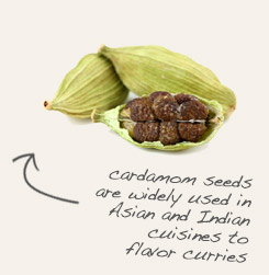 [ cardamom seed tip: Combine clove powder with cardamom in tandoori and other Indian dishes. ~ from Monterey Bay Spice Company ]
