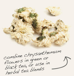 [ chrysanthemum flowers tip: Combine dandelion leaf with chrysanthemum flowers in tea blends.  ~ from Monterey Bay Spice Company ]