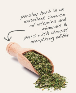 [ parsley tip: Use damiana leaf with parsley to season soups and salads. ~ from Monterey Bay Spice Company ]