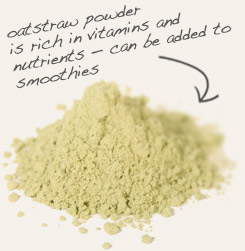 [ oatstraw powder tip: Combine powdered chickweed herb with oatstraw powder in smoothie or in skin care preparations.   ~ from Monterey Bay Spice Company ]