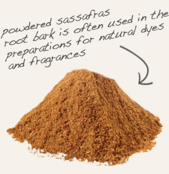 [ tip: Combine powdered kola nut with sassafras to make homemade soft drinks. ~ from Monterey Bay Spice Company ]