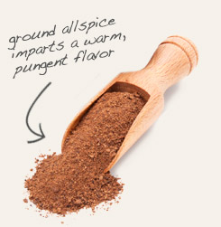 [ allspice tip: Pair clove powder with ground allspice in pumpkin pie spice mix.  ~ from Monterey Bay Spice Company ]