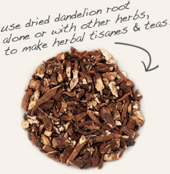 [ tip: Combine gentian root with dandelion root when making homemade herbal bitters. ~ from Monterey Bay Spice Company ]