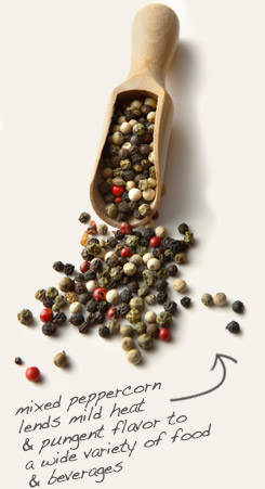 [ tip: Infuse organic brown mustard seeds in olive oil with mixed peppercorns for zesty salad dressings. ~ from Monterey Bay Spice Company ]