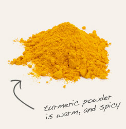 [ tip: Combine organic sesame seed with golden turmeric in your favorite Indian dishes.   ~ from Monterey Bay Spice Company ]