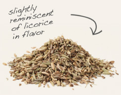[ fennel seed tip: Use cumin seed with fennel seed in stews, soups and bean and vegetable dishes. ~ from Monterey Bay Spice Company ]