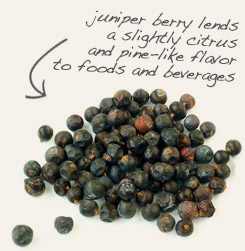 [ tip: Infuse gin, juniper, and elder berries together. ~ from Monterey Bay Spice Company ]