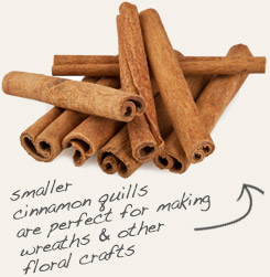 [ cinnamon sticks tip: Combine cloves with whole cinnamon in potpourri mixes. ~ from Monterey Bay Spice Company ]