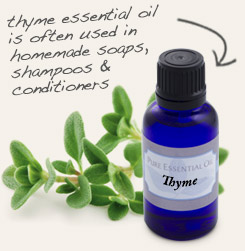 [ tip: Pair with thyme essential oil in homemade mildew cleaners. ~ from Monterey Bay Spice Company ]