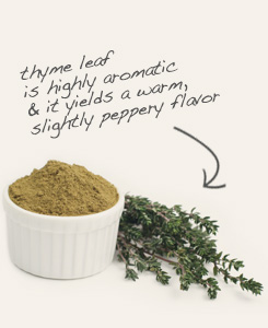[ thyme tip: Pair powdered cumin seed with dried thyme in chili seasoning.  ~ from Monterey Bay Spice Company ]