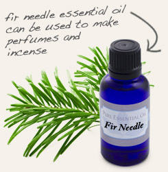 [ tip: Diffuse with fir needle essential oil to promote restful sleep. ~ from Monterey Bay Spice Company ]