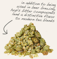 [ tip: Partner with hops when making herbal sachets and sleep pillows. ~ from Monterey Bay Spice Company ]