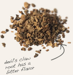[ tip: Partner meadowsweet herb with devil's claw in tinctures, infusions and in capsules.  ~ from Monterey Bay Spice Company ]