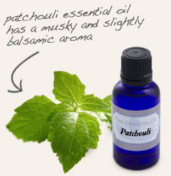 [ tip: Pair with patchouli essential oil to make a personal perfume. ~ from Monterey Bay Spice Company ]