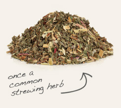 [ tip: Tincture echinacea purpurea herb or infuse in oil with meadowsweet for topical formulations.~ from Monterey Bay Spice Company ]