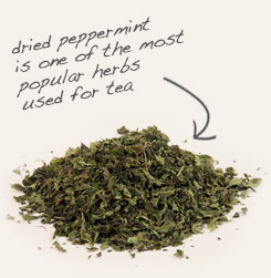 [ peppermint leaf tip: Like chamomile, peppermint is a carminative nervine that soothes nerves and enhances digestion. ~ from Monterey Bay Spice Company ]