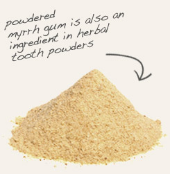 [ tip: Combine powdered dragon's blood resin with myrrh powder in incense formulations. ~ from Monterey Bay Spice Company ]