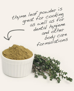 [ tip: Combine powdered hyssop with powdered thyme to produce mouthwash, skin toner and other cosmetics.  ~ from Monterey Bay Spice Company ]